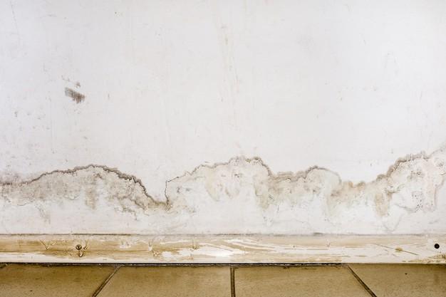 como-limpiar-la-humedad-de-las-paredes