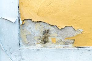 limpiar-humedad-en-paredes